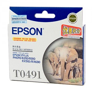 Genuine Epson T0491 Black Ink Cartridge - 450 pages